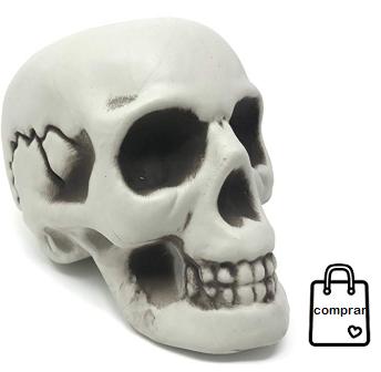 Cráneo Humano Decorativo